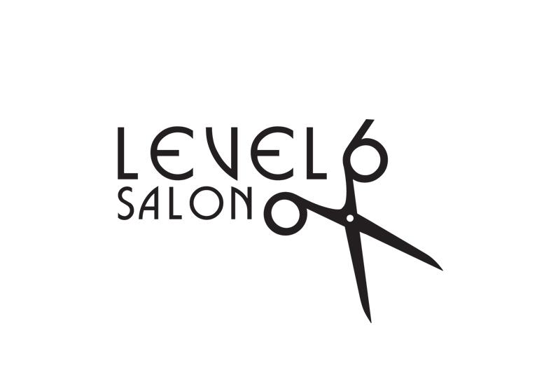 level 6 salon logo design